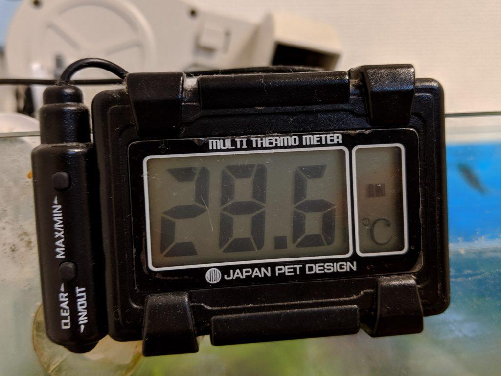 2019年8月6日19:00の水温は28.6℃